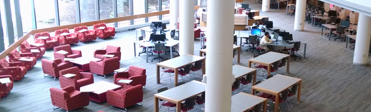 Library Information Commons